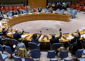 The U.N. Security Council Resolution 2475 on Persons with Disabilities in Armed Conflict was adopted unanimously at the vote and session, June 2019. Photo courtesy of the U.S. Mission to the United Nations