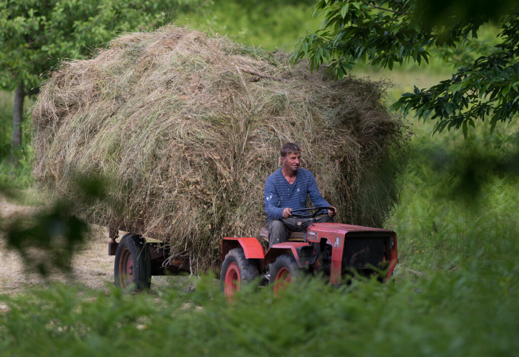 A farmer hauls a trailer loaded with hay near Dragovici. Photo by Isaac D. Pacheco