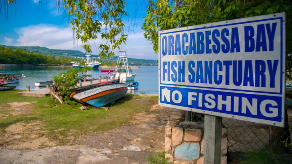 At the entry to Oracabessa Bay Fish Sanctuary, Jamaica, signage alerts visitors to 'No Fishing.' Photo courtesy of Talk Up Your Media for United Nations Development Programme